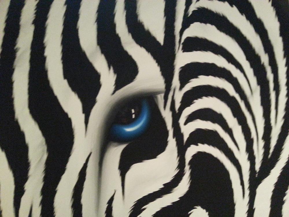 Eye Of The Zebra